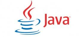 Java Runtime Environment 8.91